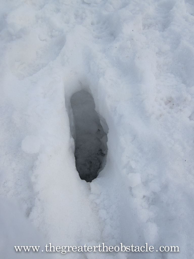 Foot print in snow.