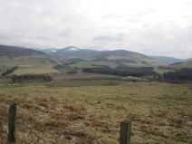 Wk5 top of the hill at Dreva, Scottish Borders.