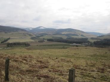 Wk5 top of the hill at Dreva, Scottish Borders.