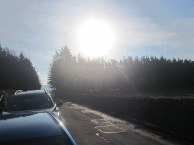 Wk4 Beautiful February sunshine…little did we know what was coming for March!